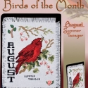 Birds of the Month  August